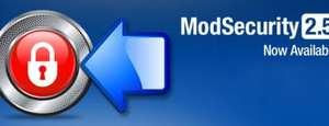 Mod Security: Más seguridad en tu web