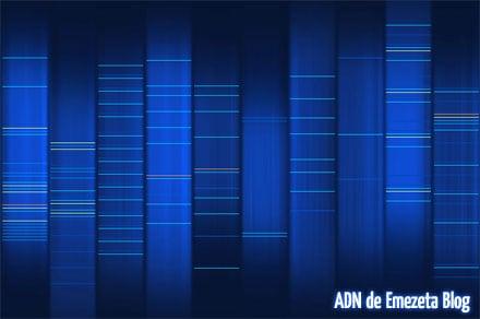 ADN emezeta blog