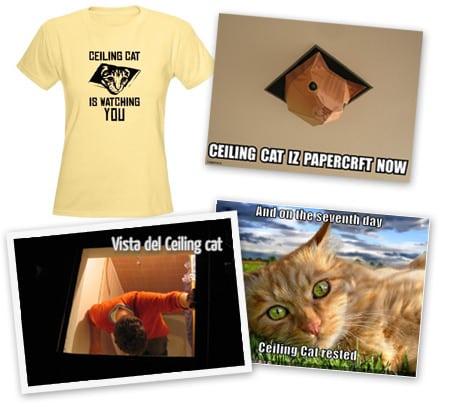ceiling cat recortable camisa camiseta gato techo