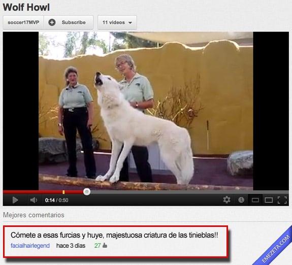 Comentarios de youtube: Majestuosa criatura
