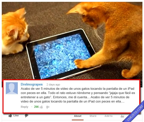 Comentarios de Youtube: Gatos ipad