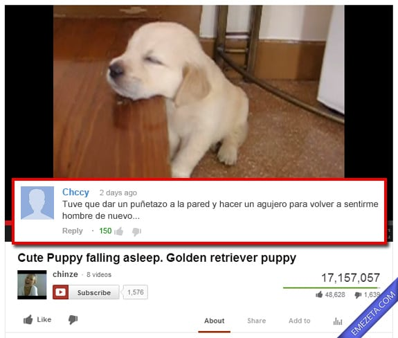 Comentarios de Youtube: Mascota dormida