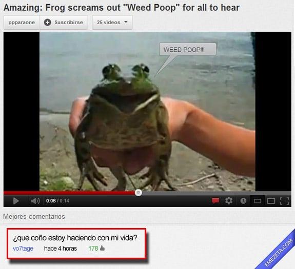 Los mejores comentarios de youtube: Rana weed poop