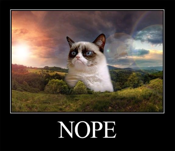 Grumpy Cat (Nope)