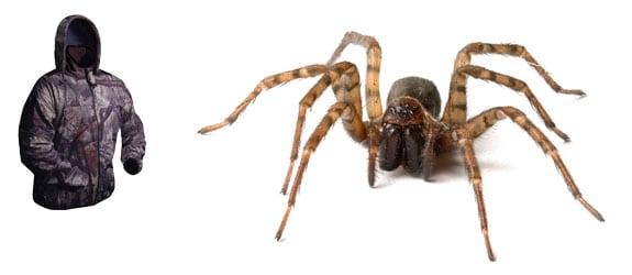 anoraknofobia arañas anorak chaqueta