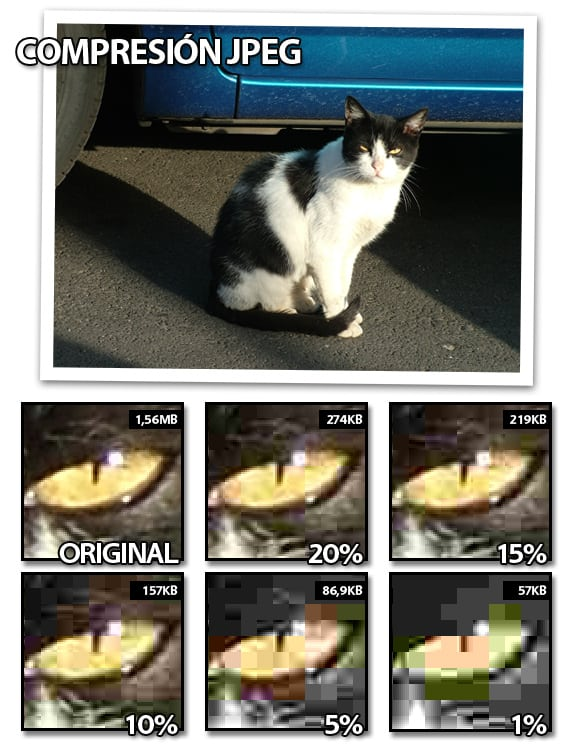 Imágenes con perdidas (lossy): Artifacts y calidad del formato JPEG.