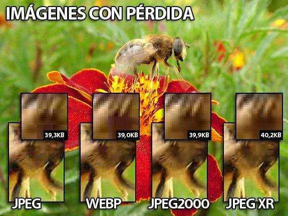Imágenes con perdidas (lossy): JPEG, WEBP, JPEG 2000 y JPEG XR.