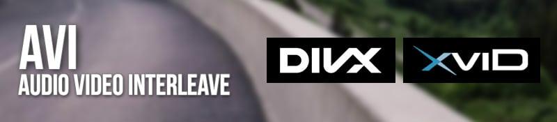 Formato AVI (DivX, XviD)