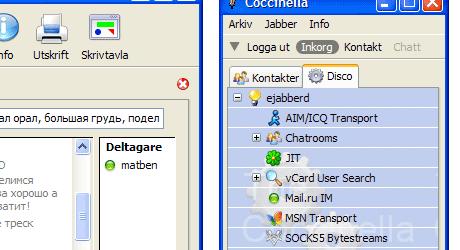 coccinella msn messenger
