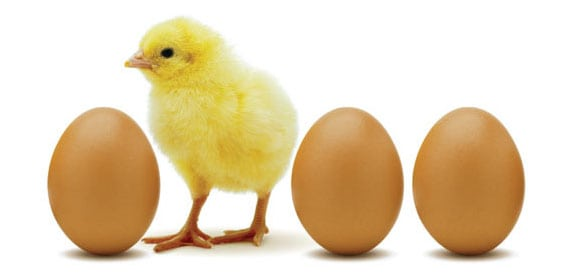 La paradoja del huevo y la gallina (filosofía)