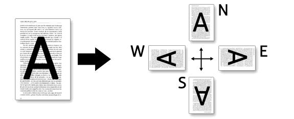 Rotate: Rotar páginas de documentos PDF.