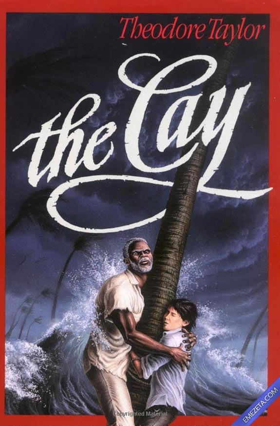 Portadas desconcertantes: The cay