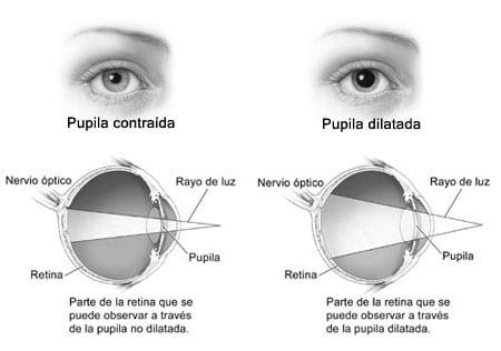 pupila ojo