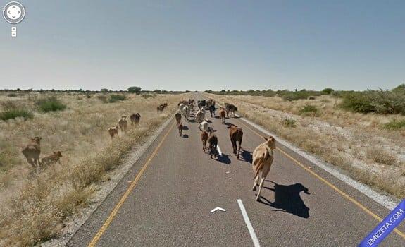 Google Street View: Nos persiguen