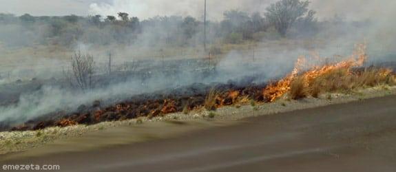 DeLorean en el Sur de África