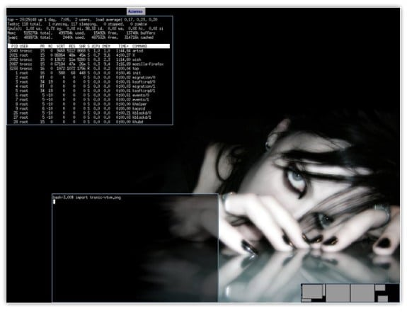 gestor de ventanas linux vtwm