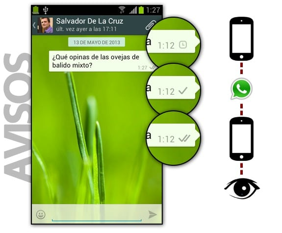 licencia whatsapp spy txt ios